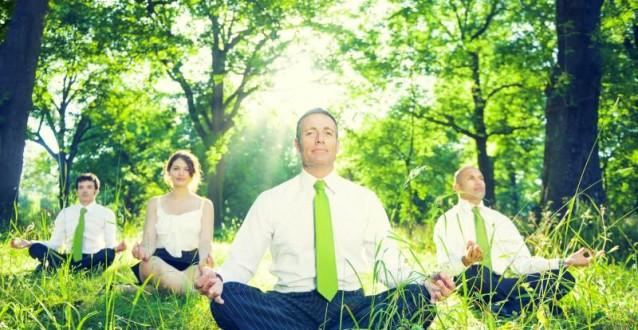 Top 5 Natuurlocaties voor uw vergadering